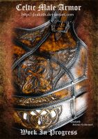 Celtic Male Armor : Torso WIP 1 by Deakath