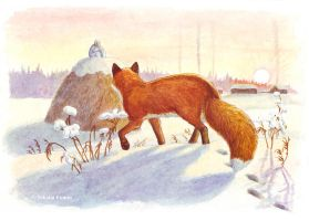 Lisavet, the fox. Calling for observation. by Nikkolainen