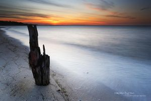 Stumped by simonebyrne