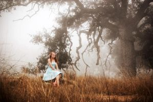 Foggy Fairytale by Hales3