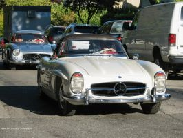 300SL Duo by SeanTheCarSpotter