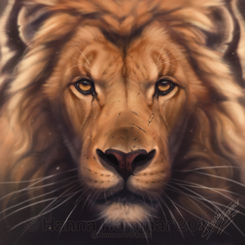 King - Speedpaint Video by HannasArtStudio