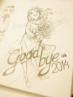 Goodbye 2014 by redKat120