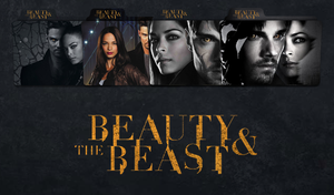 Beauty and The Beast Folder Icon by iBibikov73