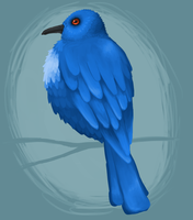 Blue Bird by SuperGhostDuck01