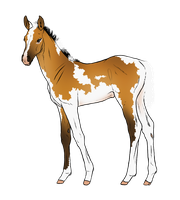Foal Design #2 by Cat-Orb