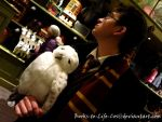 Hedwig and Harry by TwilightsInferno