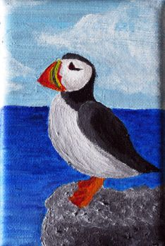 Puffin by nadda1984