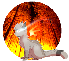 Ashfur Button by qatsby