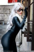 Black Cat - Spiderman by Yukilefay