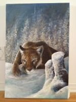 Mountain Lion by qqClare