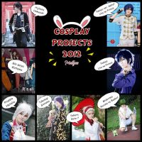My cosplay projects 2012 by mellysa