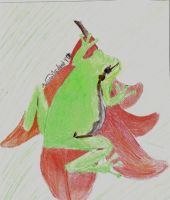Frog in Color by Zyanith