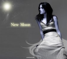 New Moon Poster 2 by carlocharmed89