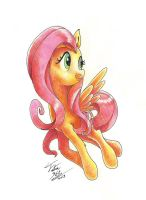 Fluttershy_Traditional by Tsitra360