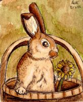 Coffee Bucket Bunny by The-Hare