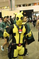 PikaPool - anime expo 2015 by antshadow13