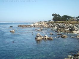 Monterey - Beach 02 by Nyaorestock