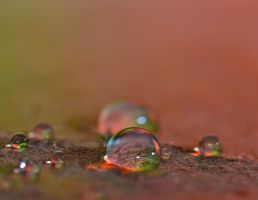 Rainbow drops by pqphotography