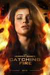 Catching Fire Poster by Nikola94