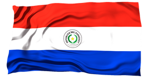 Flags of the World: Paraguay by MrAngryDog