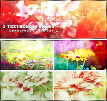 [Resources] 5 Textures Flower - Pack 1 by jemmy2000