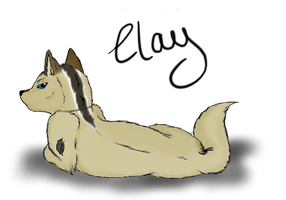 Art Trade: Clay by xXAkilaXx