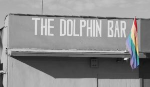 The Dolphin Bar by Katiemig413