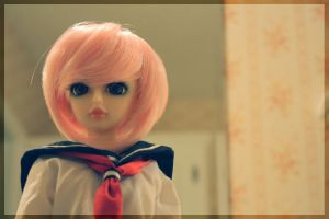 The new BJD by sdrcow