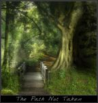 The Path Not taken by trinitylast