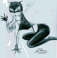 Catwoman comission by the-Element