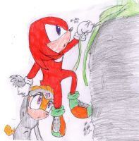 Knuckles rescuing Shade by HollyBjeam