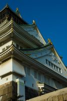 Osaka Castle - Detail 2 by ricperry1