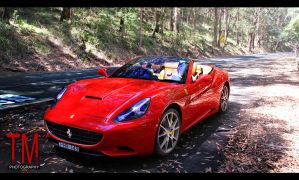 Ferarri California in Woods by tmz99