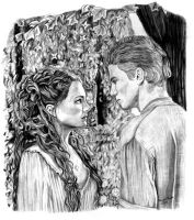 Anakin and Padme on Naboo by khinson