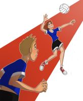 Volleyball by Calick