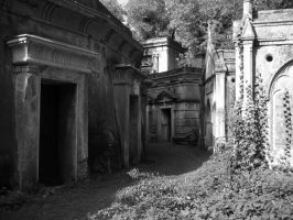 Cemetary stock 11 by Random-Acts-Stock