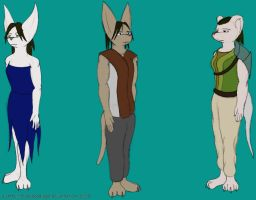 Chapter 2 clothing by TatterTailArt