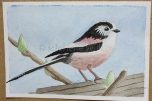Long-tailed Tit by DragonsDust