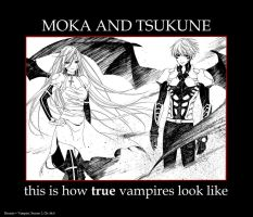 Rosario + Vampire: Moka and Tsukune, True Vampires by gamera68