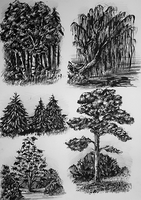 Tree Sketches by Bluefirewings