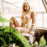 rooftop garden 4 by markdaughn