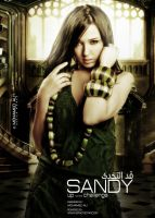 Sandy_Attractive_Design by mohamedalidesigner