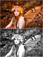 Autumn Fairy colour variations by Nixity