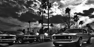 Mustang lot by Nutdeep