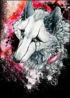 .:Black Tears:. by WhiteSpiritWolf