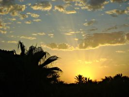 Sunrise near Sahara - Tunisia by mg1706