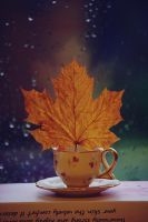 Autumnal tea by loLO-o