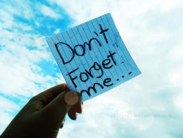 Don't Forget Me by Sireysi
