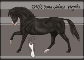 BRlS Iona Solana Virgilia | SOLD by BRls-love-is-MY-Live